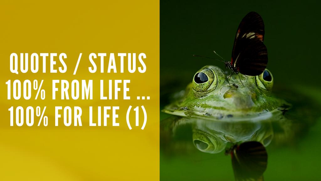 Quotes / Status (1) : 100% From the Life 100% For the Life कोट्स / स्टेटस हिंदी (1)